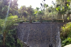 ste-do-cli-visits-el-yuque-national-park-so-cool